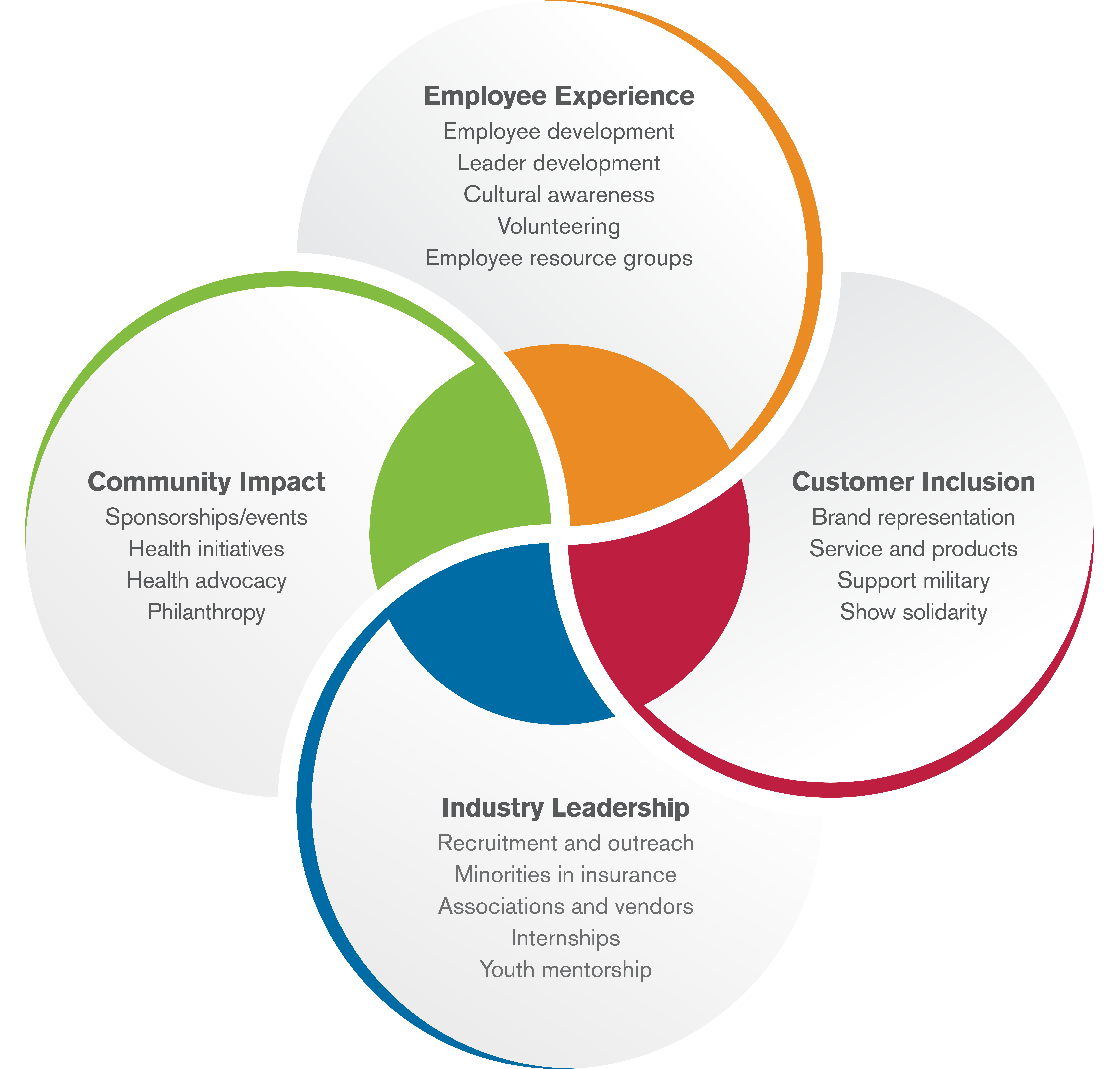 Diversity, Equity and Inclusion Excellence | WPS Health ...